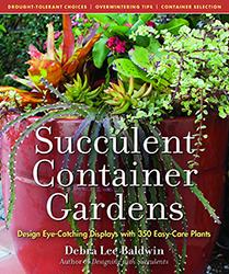 succulent-container-gardens-h250px